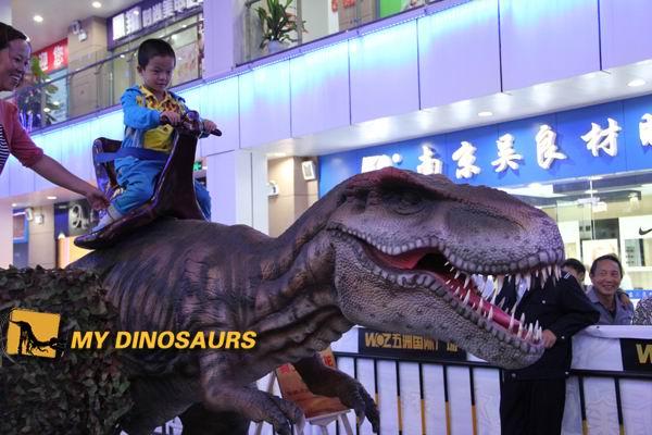MeiCun WuZhou Dinosaur Exhition