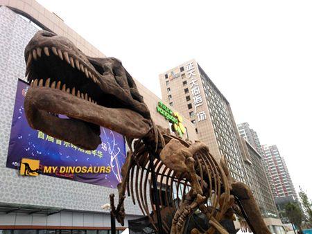 Qingdao Zhengda Damuzhi Square Dinosaur Exhibition