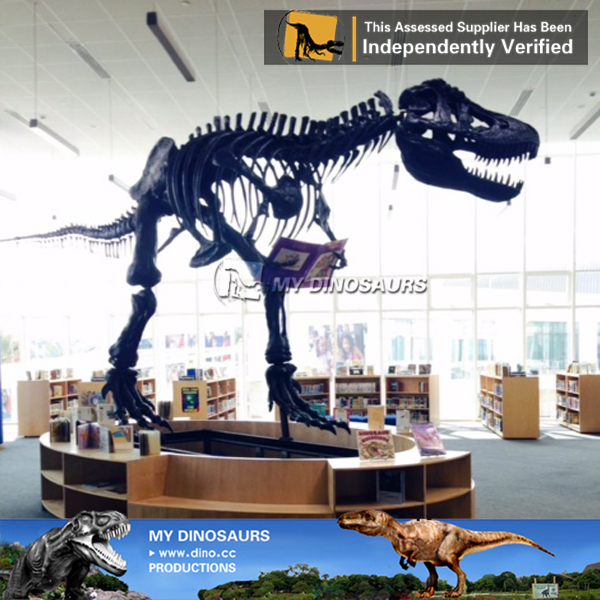 Museum Quality Full Size T REX Skeleton Replica