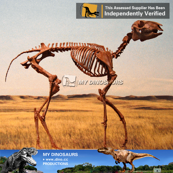 Museum Replica Original Size Dinosaur Skeleton Sculpture