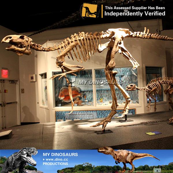 Museum Quality Life Size Dinosaur Skeleton Statue