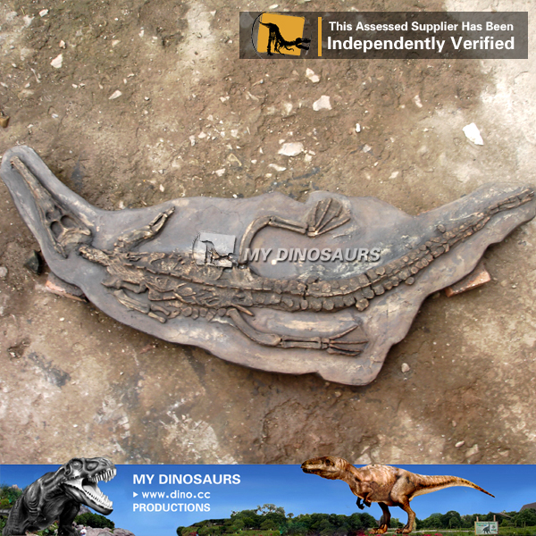 Museum Replica Artificial Animal Fossil Wall Alligator