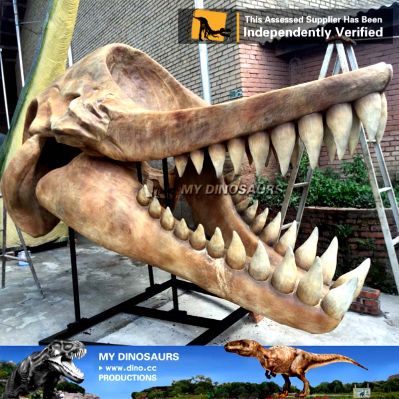 Life Size Marine Animal Sea Animal Skull Livyatan Jaw