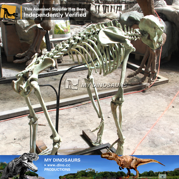 DS 016 Artificial Gorilla Skeleton Replica For Sale