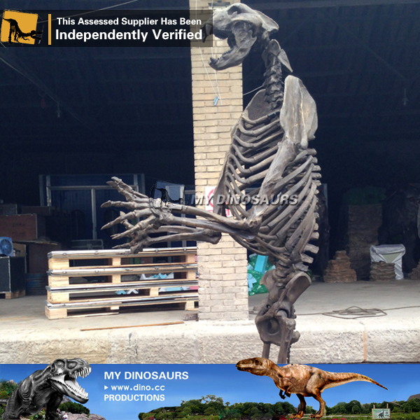 Real Size Artificial Arctodus Animal Skeleton For Museum