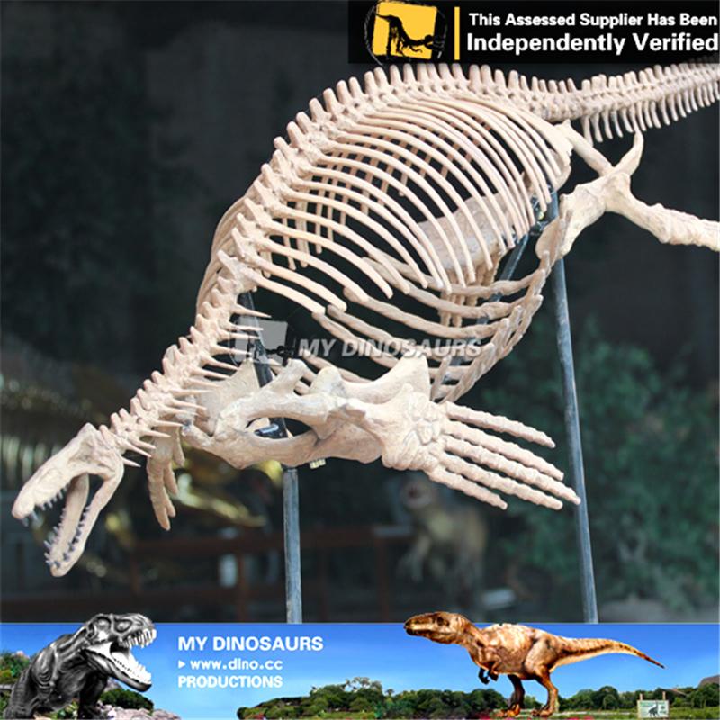 High Simulation Animated Dinosaur Skeleton of Mosasaurus