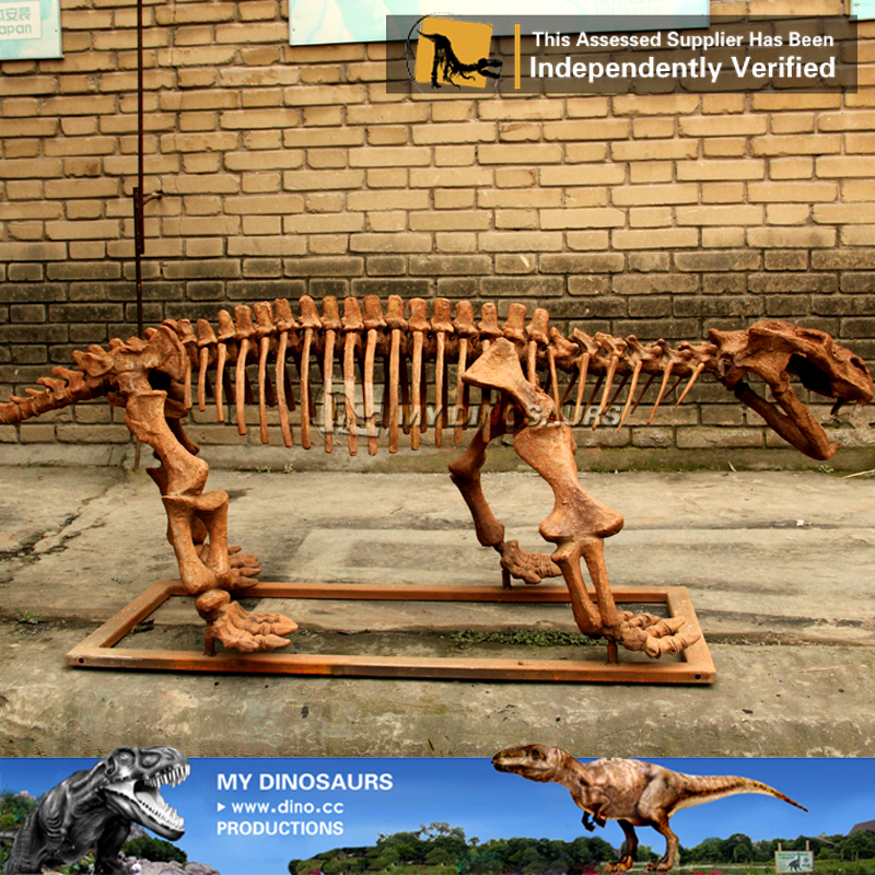 Outdoor Waterproof Life Size Dinosaur Skeleton Of Lystrosaurus