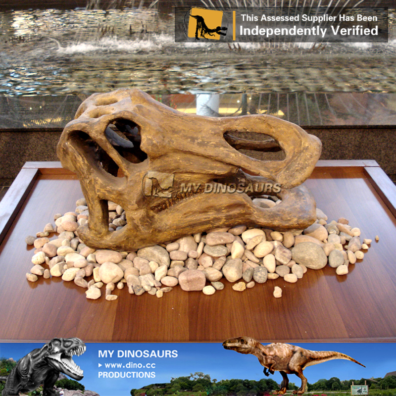 Museum Exhibition Artificial Life Size Hadrosaur Skull