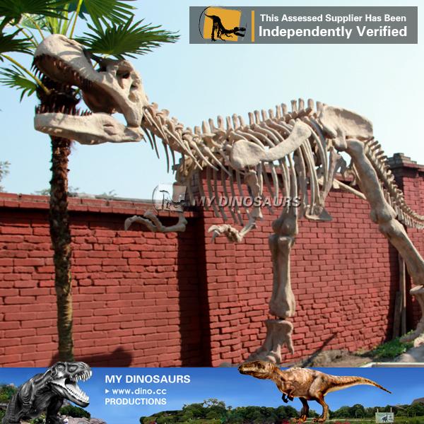 Outdoor Playground Dinosaur Skeleton Tyrannosaurus