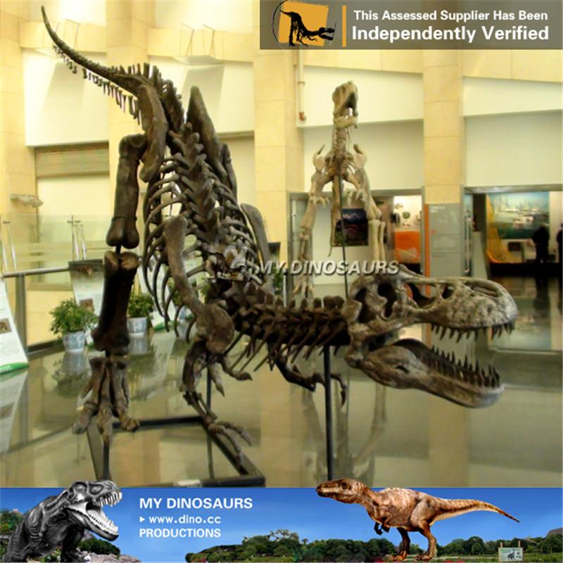 High Simulation Dinosaur Fossil Replica Tyrannosaurus Rex
