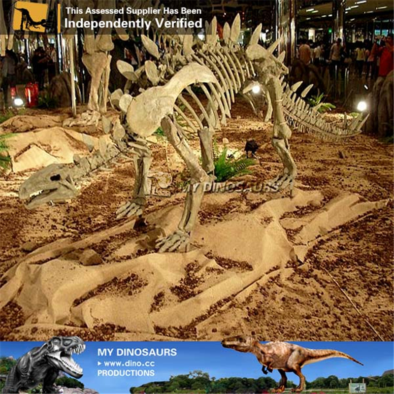 Halloween Life Size Huayangosaurus Dinosaur Skeleton
