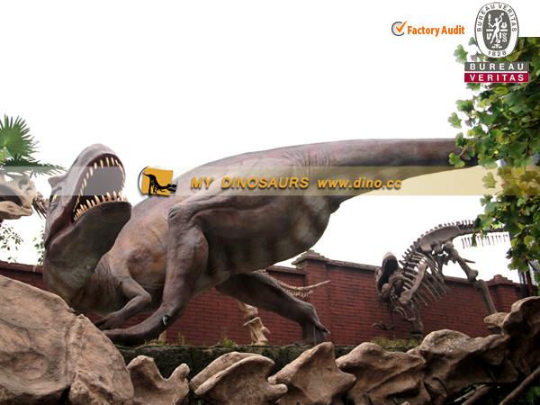 "Secret ""Cinderella Dinosaur"" Fossil"
