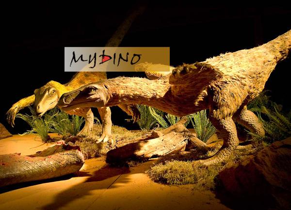 Feathered Ornithischia dinosaur   Sky Dragon