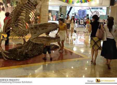 JiMo BaoLong City Square Dinosaur Exhibition