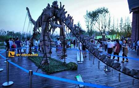 The Night Dinosaur Exhibition Debut In Yantai