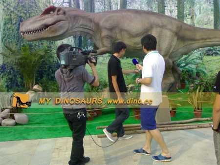 Changsha National Dinosaur Fossils Exhibition
