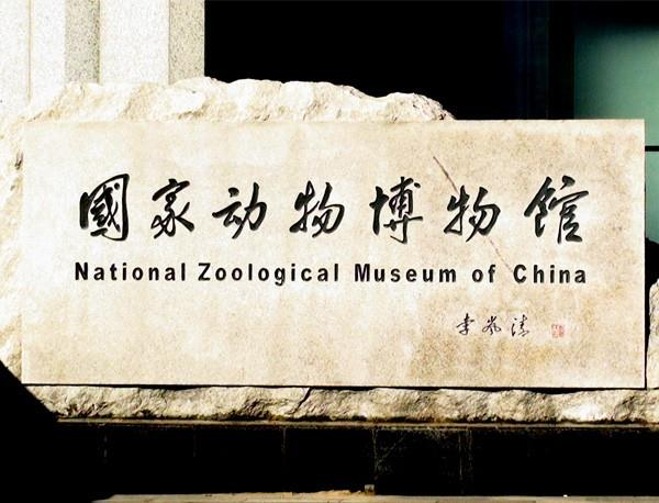 National Zoological Museum Of China
