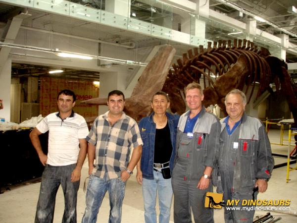 dinosaur skeleton installation team