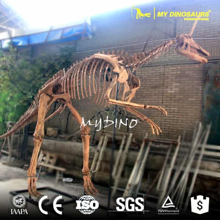 Tsintaosaurus skeleton