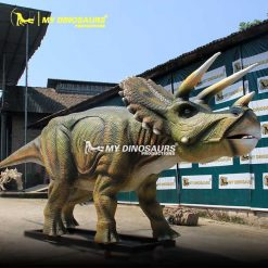 life size dinosaur triceratops