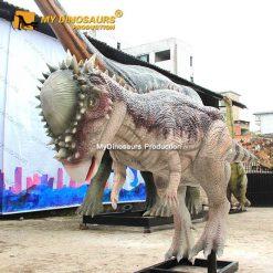 pachycephalosaurus dinosaur 1