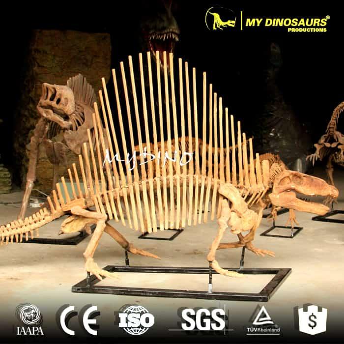 Dinanomodon skeleton 3