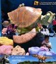 carton turtle figures
