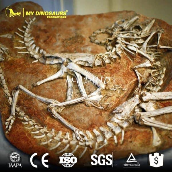 dinosaur fossil panel