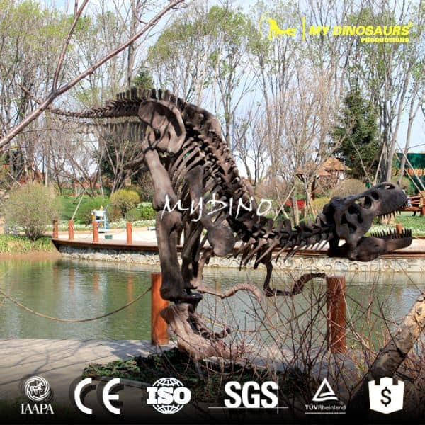 dinosaur skeleton for sale