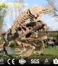 Dinosaur Skeleton Fossil