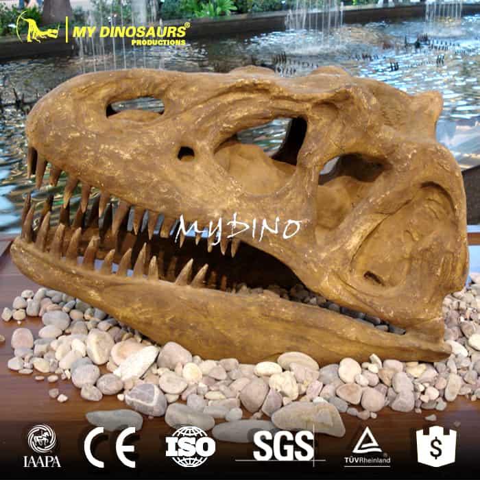 dinosaur skull sale
