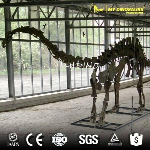 playground Apatosaurus skeleton