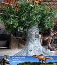 kids playground talking tree