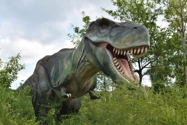 Dinosaurs In KDFP