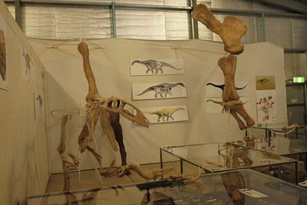 The Australian Age Of Dinosaur Museum Near Winton