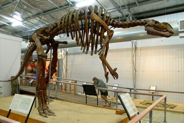 Australian Age Of Dinosaurs A Anticipated Dinosaur Museum