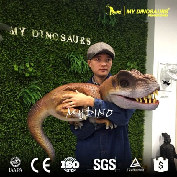 Dinosaur Petting