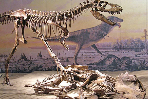 Dinosaur Provincial Park4