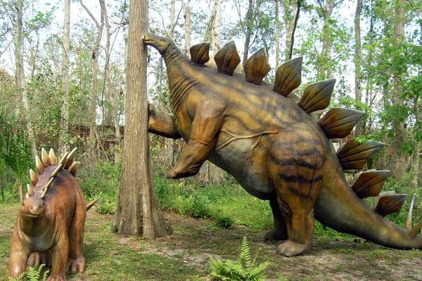 Dinosaur World8