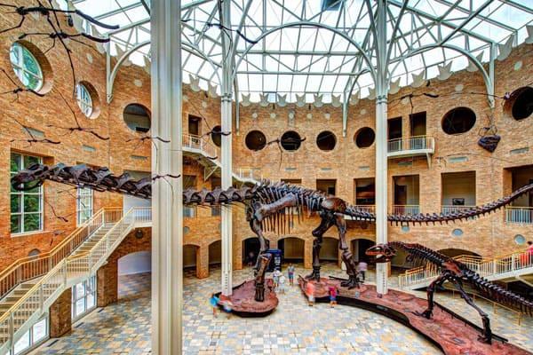 Fernbank Museum of Natural History2