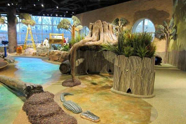 Fernbank Museum of Natural History5