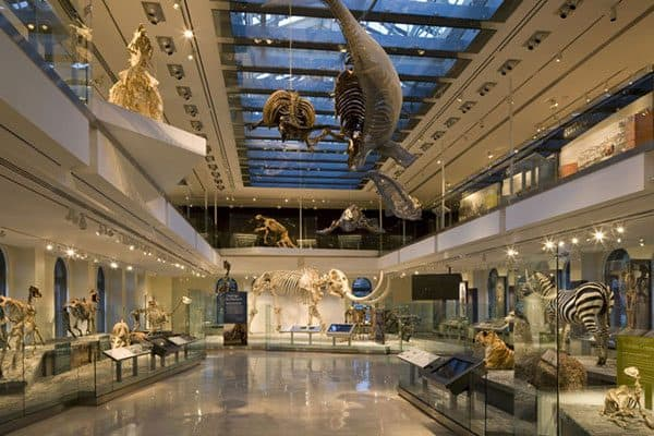 Natural History Museum of Los Angeles County2