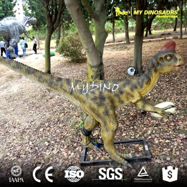 Customized Dinosaurs Oviraptor
