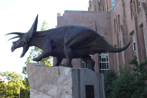 Yale Peabody Museum 1