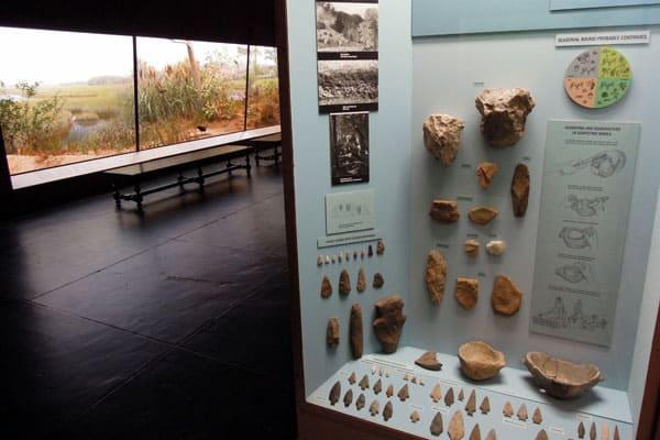 Yale Peabody Museum 4