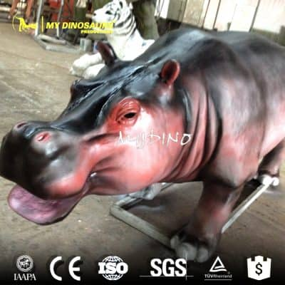 Zoo animal hippo