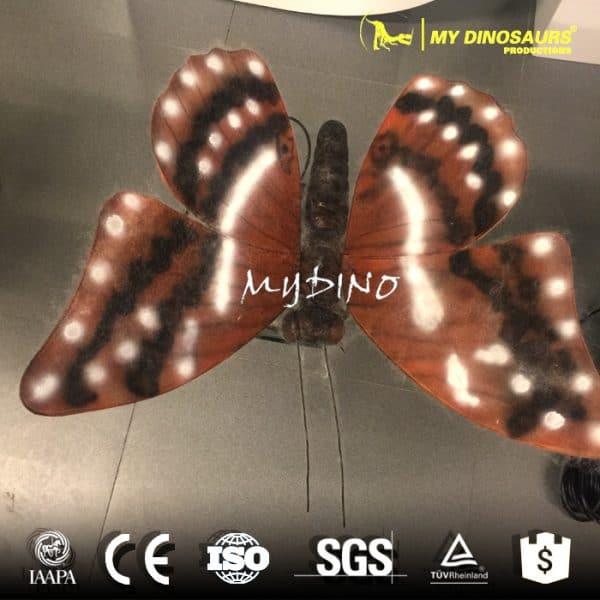 土土黄蝴蝶