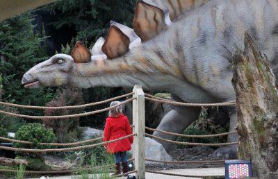 A girl and stegosaurus