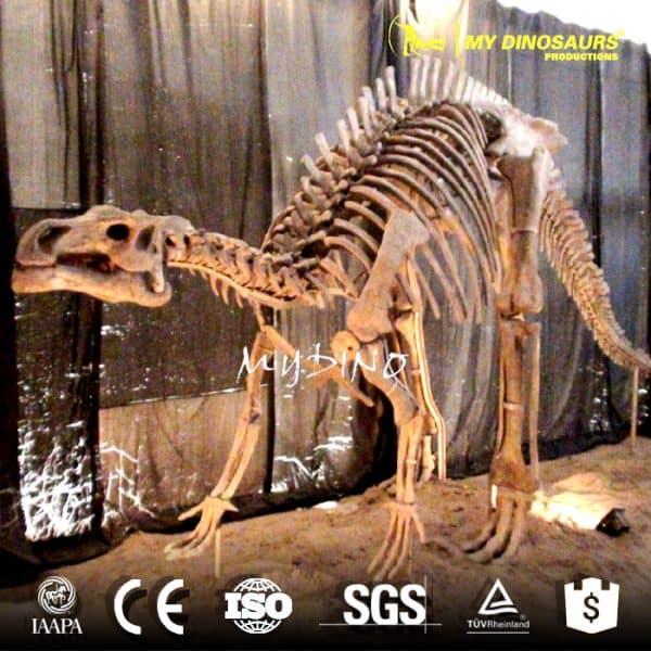 Iguanodon skeleton 1