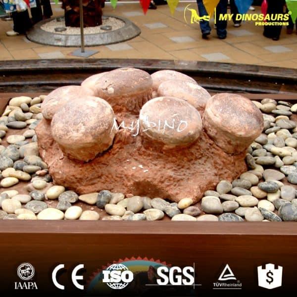 dinosaur eggs fossil